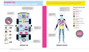 6th grade body systems yayscience