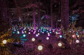 garvan gardens u0027 holiday lights walk will enchant you in arkansas