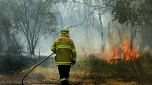 bushfires at abermain and neath decimate 1200 hectares photos