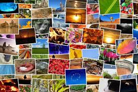 a slideshow montage corel discovery center
