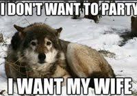 Lone Wolf Meme - amazing lone wolf meme lone wolf meme to pin on pinterest pinsdaddy