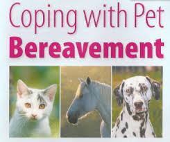 pet bereavement coping with pet bereavement hoylake vets