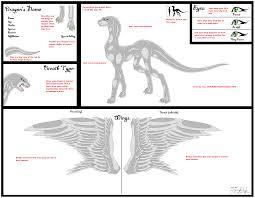 pre shaded female dragon ref sheet base 2 by neffertity on deviantart
