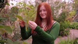 Botanical Garden Internship Botanical Garden Internship Focuses On Endangered Species Research