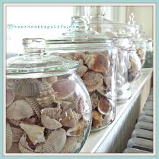 coastal home decor shells sea urchins sea glass collections in