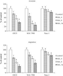 oma s k che inhibitory effects of maslinic acid upon human esophagus stomach