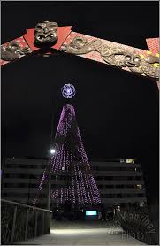 Outdoor Christmas Decorations New Zealand by 299 Best Christmas In New Zealand Summer Fun Images On Pinterest