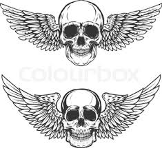 skull with wings stock vector colourbox