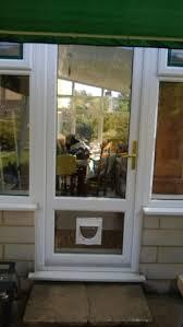 back door glass dog flap in glass door image collections glass door interior
