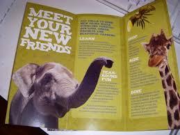 zoo brochure template zoo brochure graphic design brochures and visual