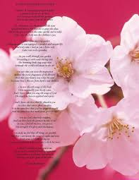 happy mother u0027s day poems happy mothers day 2016 gift ideas