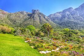 Kirstenbosch Botanical Gardens Kirstenbosch National Botanical Gardens Cape Town South Africa