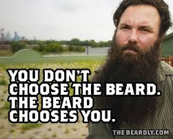 Funny Beard Memes - why i don t grow a beard funny