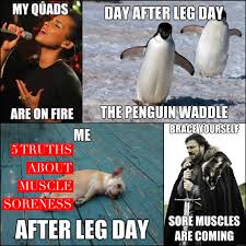 Sore Muscles Meme - five truths about muscle soreness and five ways to deal with it