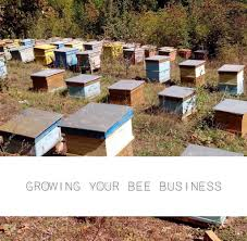 backyard beekeeping for extra cash u2013 bottlestore com blog