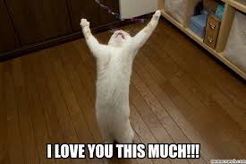 I Love You This Much Meme - love you this much