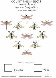 insect counting worksheet wasps and dragonflies wasp