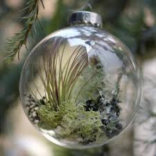 5 favorites living ornaments gardenista