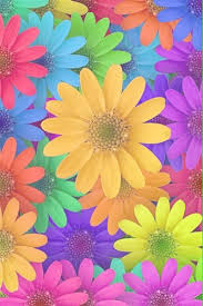 yellow daisy wallpapers photo collection gerbera daisy wallpaper