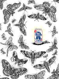 like a moth to a on behance