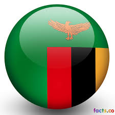 Flag Color Meanings Zambia Flag All About Zambia Flag Colors Meaning Information