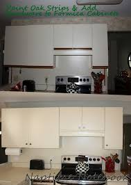 can you paint formica kitchen cabinets kitchen cabinets formica kitchen cabinets astounding design 11 reface yourself hbe