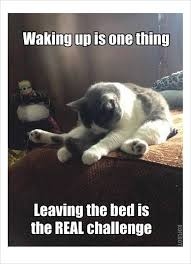 Funny Memes About Monday - 10 morning memes 3 the most brutal 5 minutes in my life