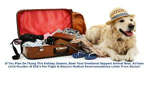 West Virginia how to travel with a dog images Emotional animal support letter jpg