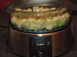 cuisine vapeur recette raviolis à la vapeur pour ceux qui aiment cuisiner