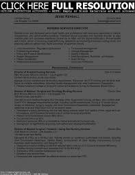 assistant director nursing resume professional licensed nurse