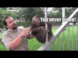 Angry Sloth Meme - jet fuel can t melt steel beams youtube