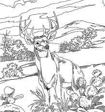 hunting coloring pages and coloring pages itgod me