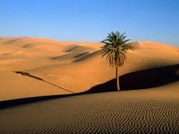 sahara desert facts and tours traveler corner