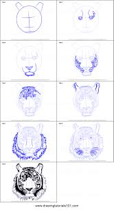 drawing a tiger face step by step how to draw a tiger face