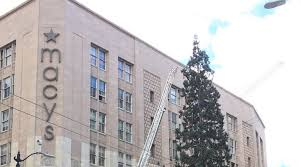 man climbs macy u0027s christmas tree seattle downtown hurls apple at