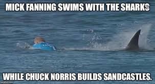 Shark Attack Meme - mick fanning imgflip