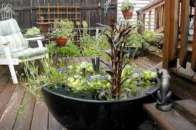 small container garden ideas best tips to container gardening