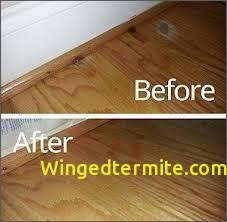 how to fix water damage on wood table unique water damage wood winged termite