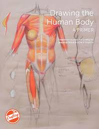 Human Anatomy In Pdf Learn How To Draw The Human Body With A Free Eguide