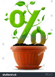 Flower Pot Sale Growing Percentage Symbol Plant Leaves Flower Stock Vector
