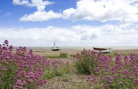 Suffolk Cottage Holidays Aldeburgh by Suffolk Holiday Cottages Holidaycottages Co Uk