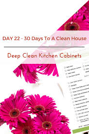 Clean Kitchen Cabinets Grease Cleaning Kitchen Cabinet Doors Home Design Ideas