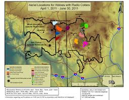 Arizona Spring Training Map by Management Of The Mexican Wolf