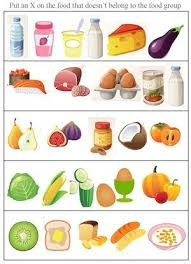 food group worksheets free worksheets library download and print