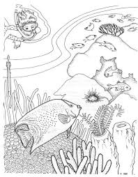 coral reef coloring pages online enjoy coloring nature