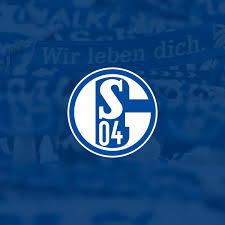 schalke spr che homepage fc gelsenkirchen schalke 04 e v