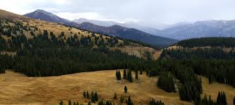 Colorado Forest images Arapaho roosevelt national forests may close 225k acres to shooters jpg