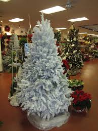 christmas trees douglas fir trimmed flocked in store