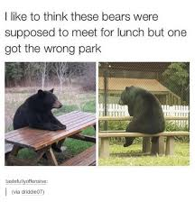 Funny Bear Meme - i like to think these bears were supposed to meet for lunch but one