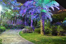 Laser Light Decoration Garden Laser Lights Nz Home Outdoor Decoration